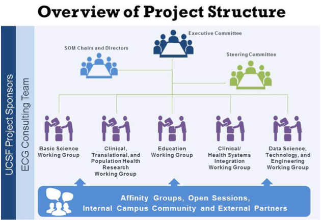 Overview of Project Structure