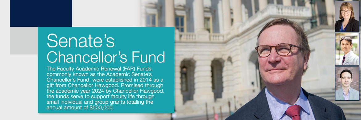 Senate's Chancellor's Fund Article
